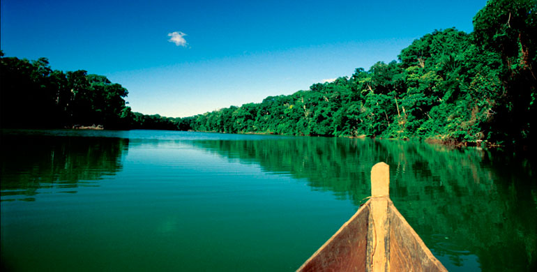 experience biodiverse amazon decades past