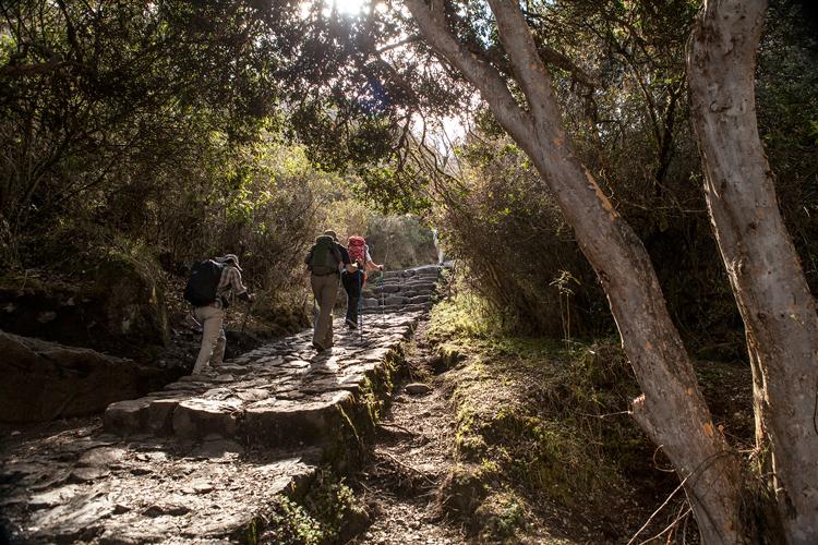 inca trail peru walk itself