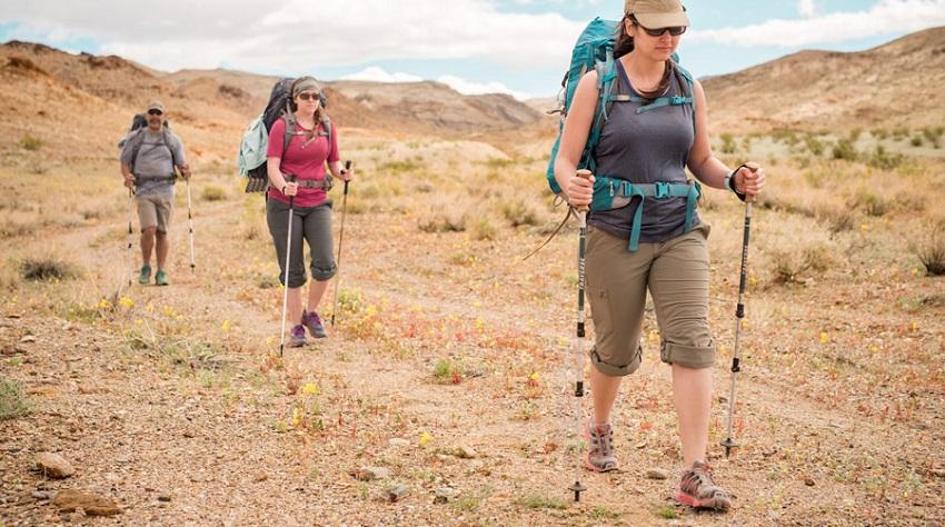 trekking-poles-pros-cons